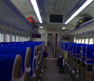 Interior KA Mutiara Selatan